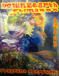 Down2 Earth Climaxxx Herbal Incense