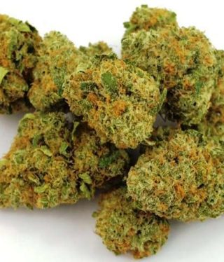 Buy Infinite Euphoria Marijuana