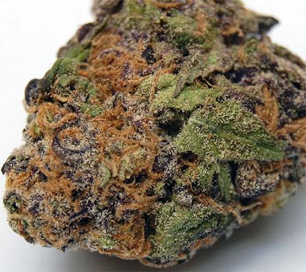 Buy Lavender Marijuana Strain