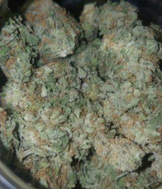 Buy Pineapple Express Marijuana Strain