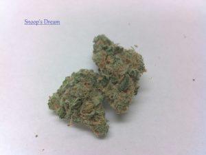 Buy Snoop's Dream Marijuana Strain
